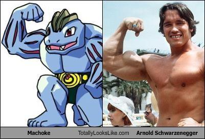 Arnold Schwarzenegger,machoke,muscles,Pokémon
