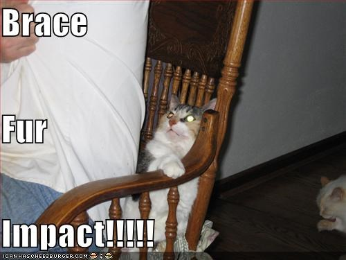 afraid,brace,bracing,caption,captioned,cat,human,impact,sitting,worried
