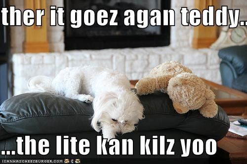 ther it goez agan teddy...  ...the lite kan kilz yoo