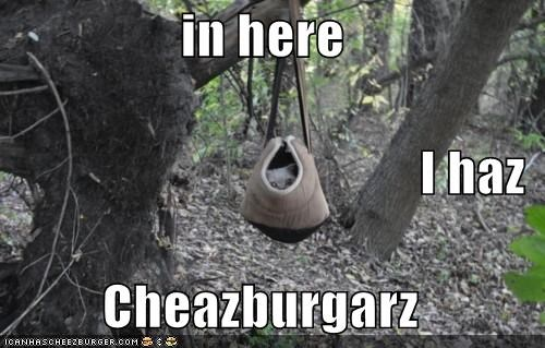 in here I haz Cheazburgarz