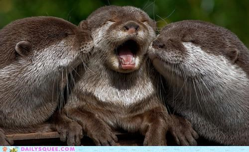 acting like animals,adolescent,calling for help,cooties,do not want,freaked out,gross,kisses,kissing,mom,mother,otter,otters,plea,pleading,upset
