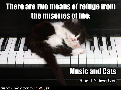 Cat Quotes #6