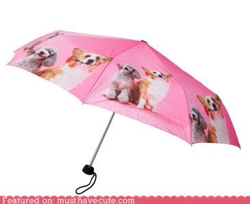 Puppy Dog Umbrella