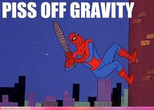 animation,funny,Hall of Fame,meme,Spider-Man