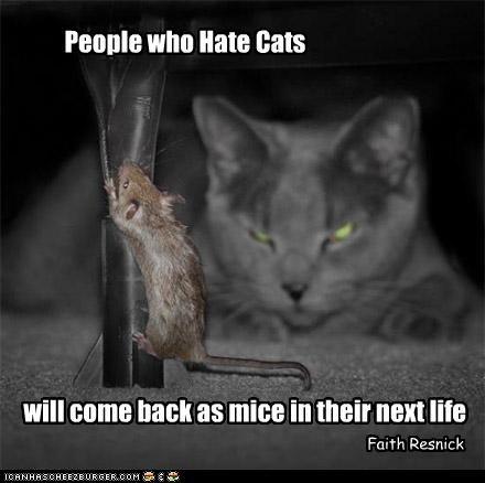 Cat Quotes #9