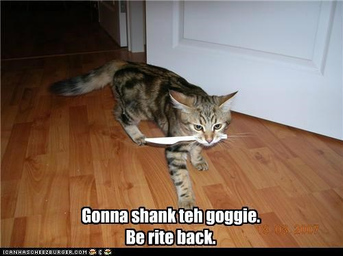 Gonna shank teh goggie. Be rite back.