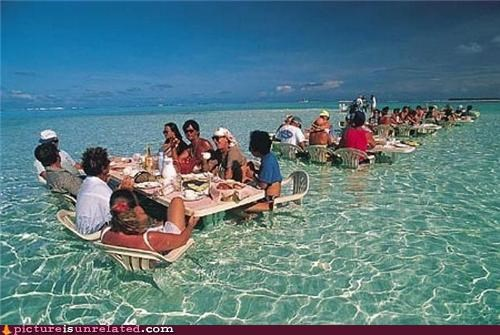 awesome,beech,ocean,tide,wtf