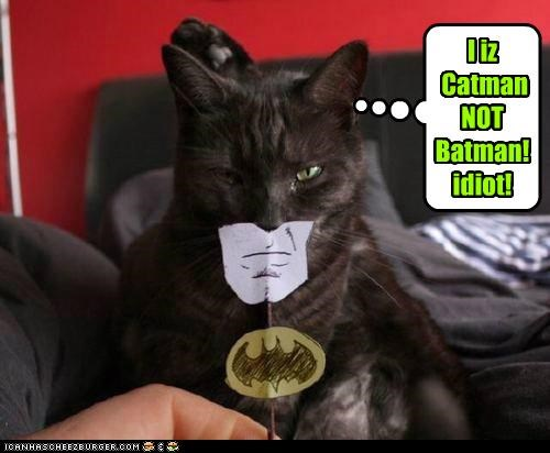 I iz  Catman NOT Batman! idiot!