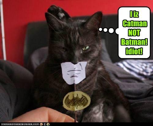 I iz  Catman NOT Batman! idiot!