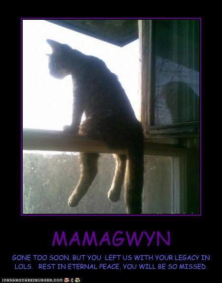 MAMAGWYN