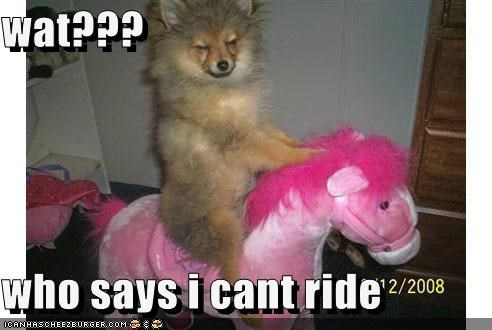 wat???  who says i cant ride