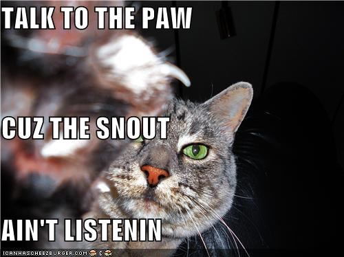 TALK TO THE PAW CUZ THE SNOUT AIN'T LISTENIN