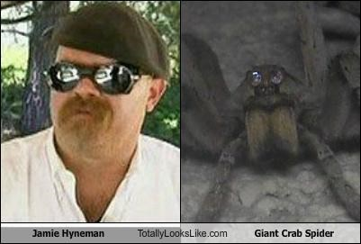 Jamie Hyneman Totally Looks Like Giant Crab Spider