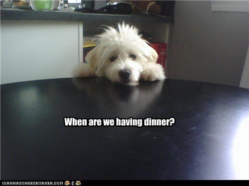 When are we having dinner?