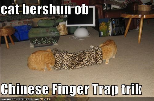 cat bershun ob  Chinese Finger Trap trik