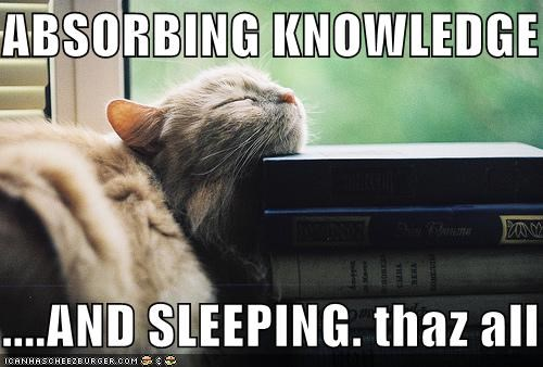 ABSORBING KNOWLEDGE  ....AND SLEEPING. thaz all