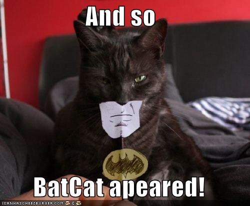 And so  BatCat apeared!