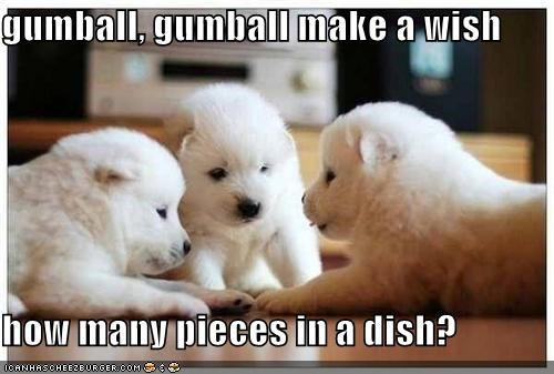 gumball, gumball make a wish  how many pieces in a dish?