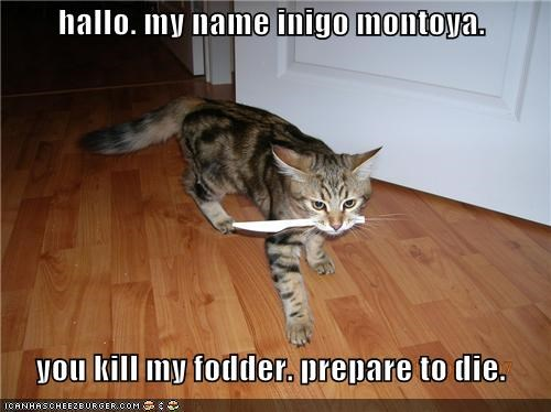 hallo. my name inigo montoya.    you kill my fodder. prepare to die.
