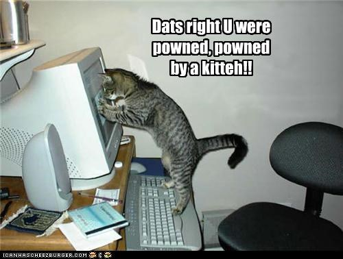 Dats right U were powned, powned by a kitteh!!