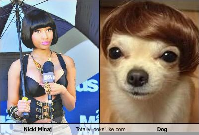 Nicki Minaj Totally Looks Like Dog