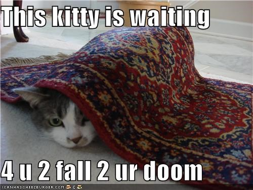 This kitty is waiting   4 u 2 fall 2 ur doom