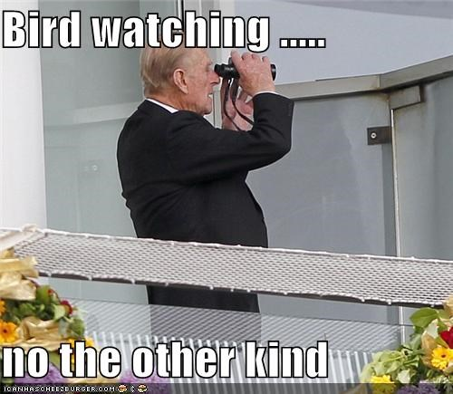 Bird watching .....   no the other kind