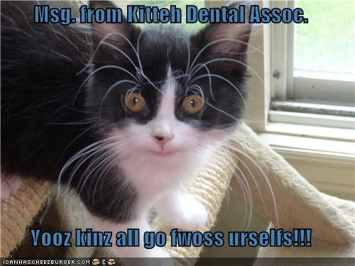 Msg. from Kitteh Dental Assoc.  Yooz kinz all go fwoss urselfs!!!