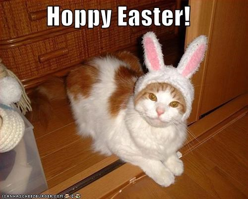 Hoppy Easter!