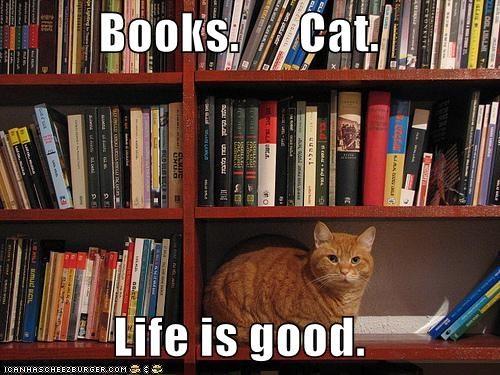 Books.      Cat.  Life is good.