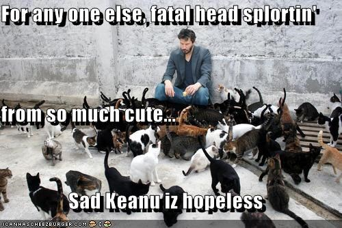 Keanu Reeves Is Resistant To Cyoot