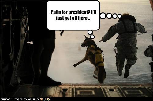 dogs,parachute,political pictures