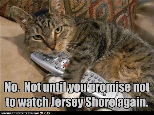 No.  Not until you promise not to watch Jersey Shore again.