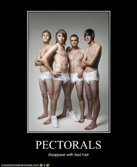 PECTORALS