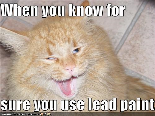 The Dangurrs of Lead Purrrnnt