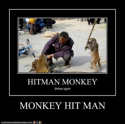 MONKEY HIT MAN