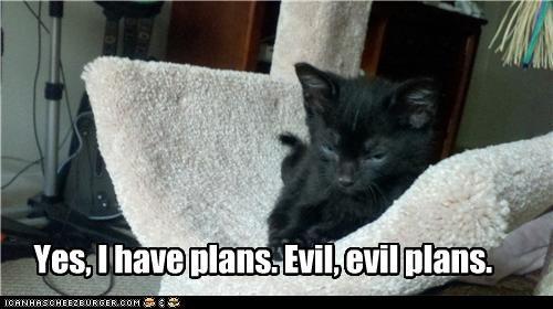 Yes, I have plans. Evil, evil plans.