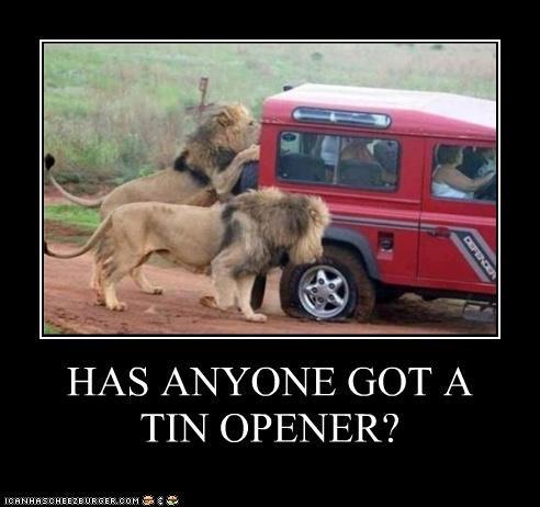 HAS ANYONE GOT A TIN OPENER?