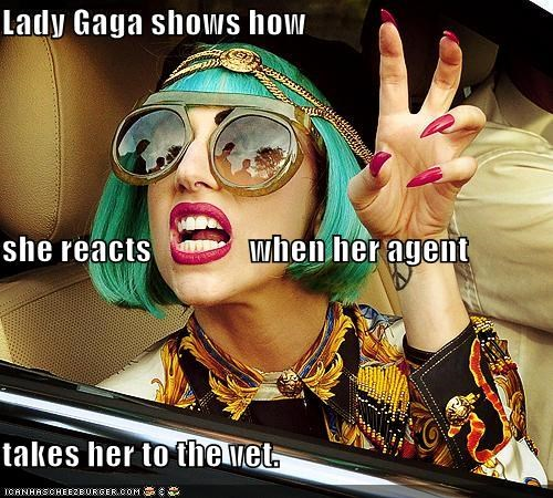 Lady Gaga shows how she reacts               when her agent takes her to the vet.