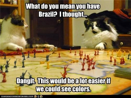This is why cats don't play board games