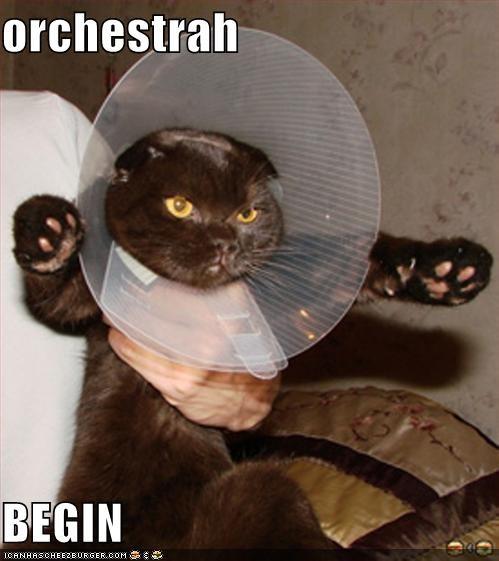 orchestrah