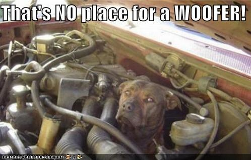 That's NO place for a WOOFER!