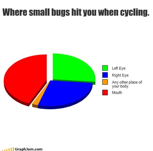 bicycles,bugs,gross,Pie Chart