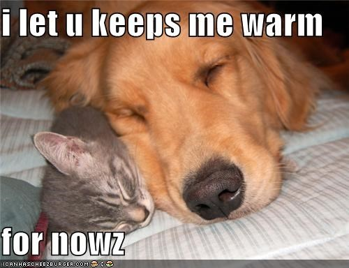 i let u keeps me warm  for nowz