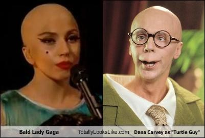"Bald Lady Gaga Totally Looks Like Dana Carvey as ""Turtle Guy"""