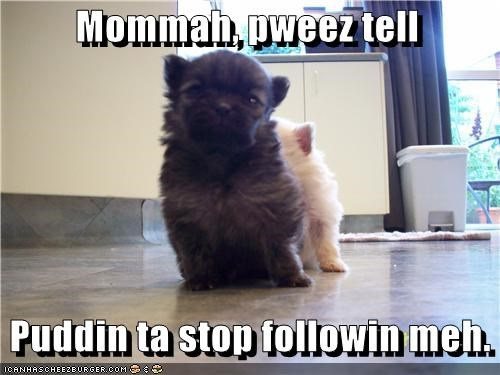 Mommah, pweez tell
