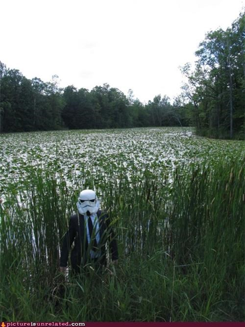 The Storm Trooper's Legal Aid Seems to Have Gotten Lost on Endor