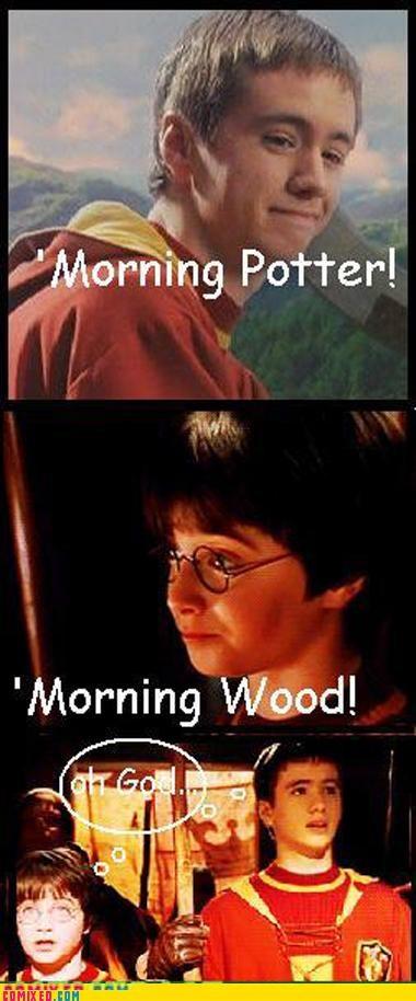 boner,Harry Potter,oliver wood,potter,quidditch