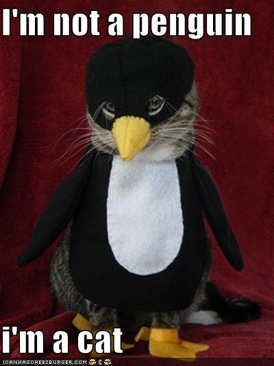 I'm not a penguin   i'm a cat