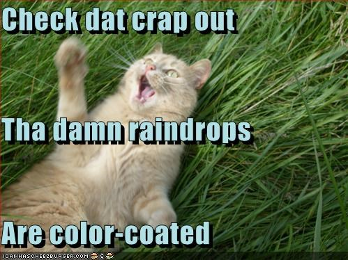 Check dat crap out Tha damn raindrops Are color-coated